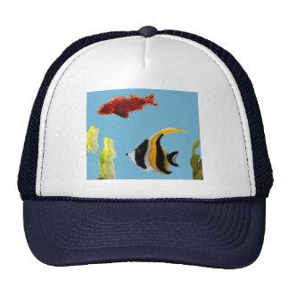 Fish Art swimming in the sea Cap