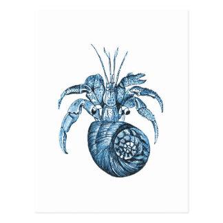 Fish beach ocean coastal nautical sea blue gifts postcard