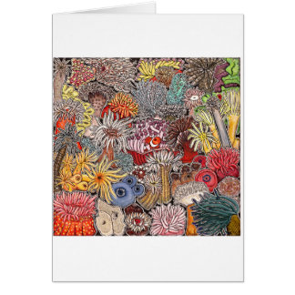 Fish clown and anemones card