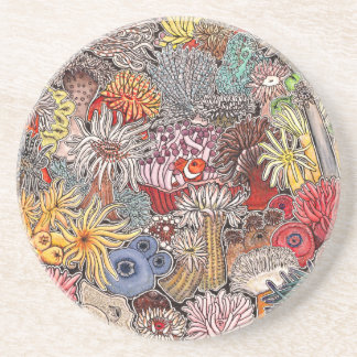 Fish clown and anemones coaster