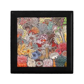 Fish clown and anemones gift box