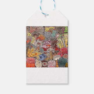 Fish clown and anemones gift tags