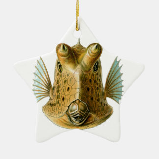 Fish enface ceramic ornament