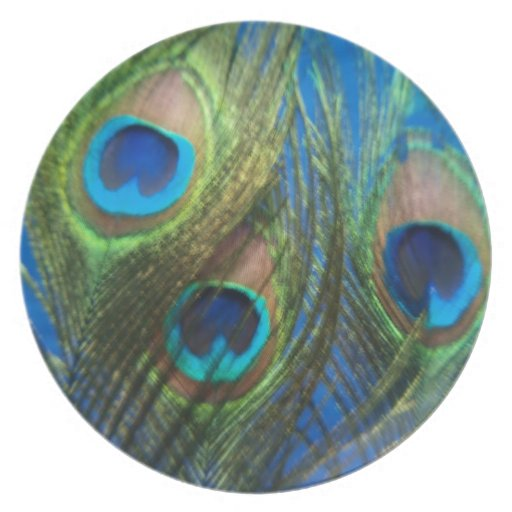 Fish Eye Peacock Still Life Dinner Plate