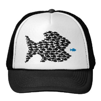 fish fish swarm fishing school hat