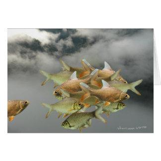 Fish & Fog Card