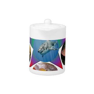 fish,goldfish,carp, fishing, sea, ocean, animal