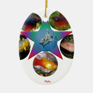 fish,goldfish,carp, fishing, sea, ocean, animal ceramic ornament