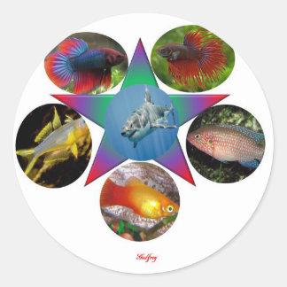 fish,goldfish,carp, fishing, sea, ocean, animal classic round sticker