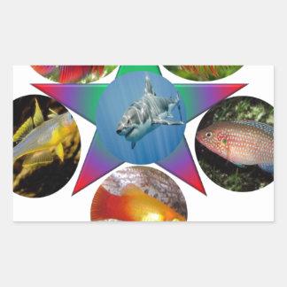 fish,goldfish,carp, fishing, sea, ocean, animal rectangular sticker