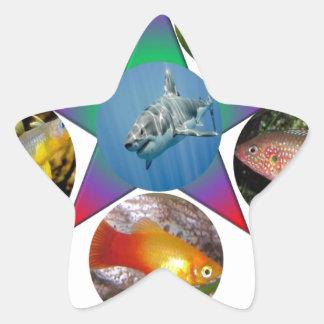 fish,goldfish,carp, fishing, sea, ocean, animal star sticker