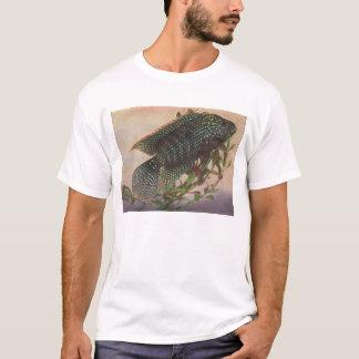 Fish - Jack Dempsey - Archocentrus octofasciatus T-Shirt