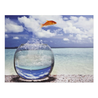 Fish jumping from fish tank postcard