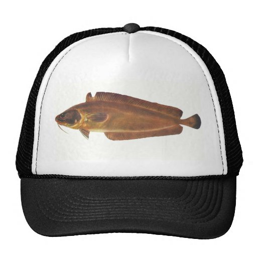 Fish - Ling - Lotella callarias Trucker Hat