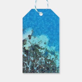 Fish moving over the reef gift tags