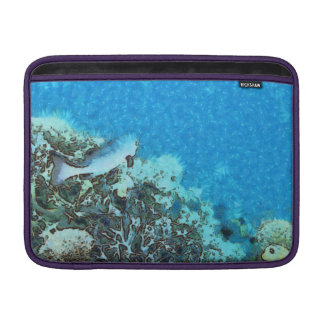 Fish moving over the reef MacBook sleeve