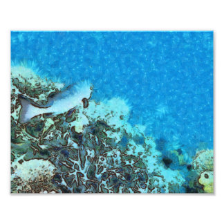 Fish moving over the reef photo print