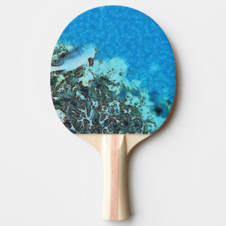 Fish moving over the reef ping pong paddle