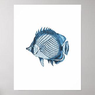 Fish nautical coastal ocean beach sea blue poster