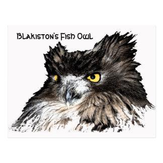 Fish Owl bust postcard