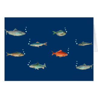 Fish Pattern Card