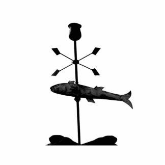 Fish Photo Sculpture