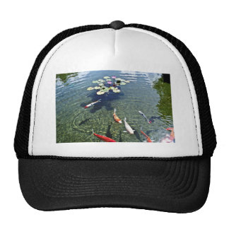 Fish Pond - Oahu Mesh Hat