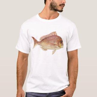 Fish - Red Bream - Chryosophrys guttuatus T-Shirt