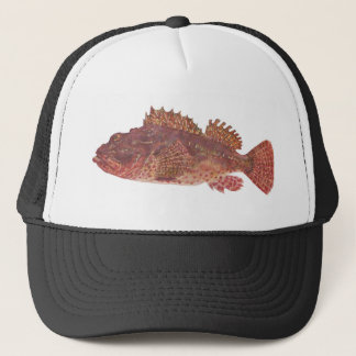 Fish - Red Rock Cod - Scorpaena cardinalis Trucker Hat