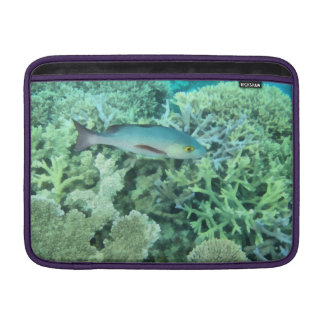 Fish roaming the reef sleeve for MacBook air