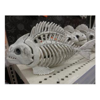 Fish Skeleton Postcard