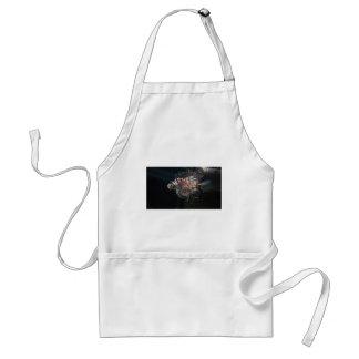 fish standard apron