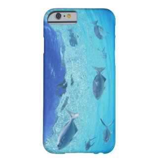 Fishes in the sea 4 barely there iPhone 6 case