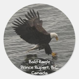 Fishing Bald Eagle Gift Set Round Sticker