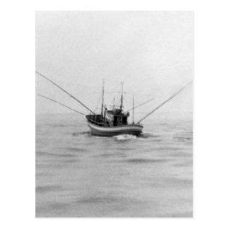 Fishing Boat Trolling Postcard
