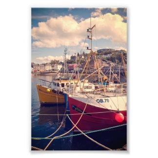 Fishing boats tied up at Oban Photo