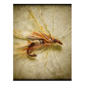 Fishing Fly Postcard