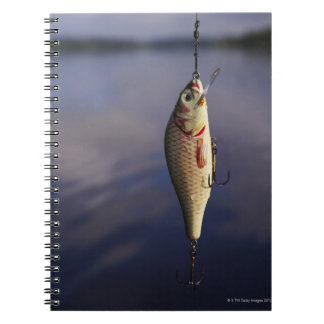 fishing lure in front of water note books