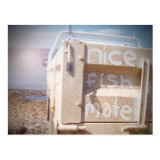 Fishing nice fish mate blue beige beach ute postcard