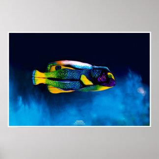 Fishing rod fish by Johannes Stötter Poster