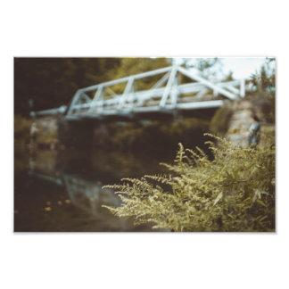 Fishing Under The Bridge Photograph