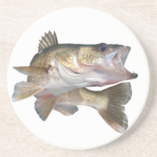Fishing Walleye Coaster