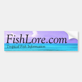 FishLore.com Bumper Sticker