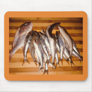 Fishy business mouse pad