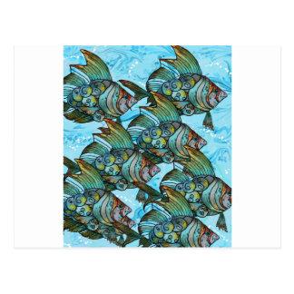 Fishy Fishy Postcard