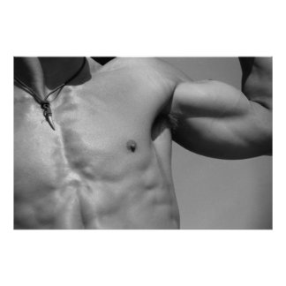 Fitness Model Chest & Arm Poster