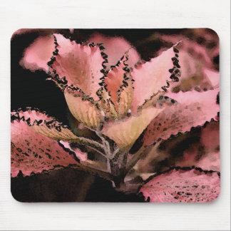 Fittonia argynoneura 'Pink Star' Mouse Pad