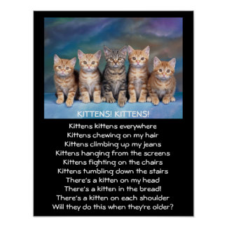 Five Adorable Tabby Kittens Poster