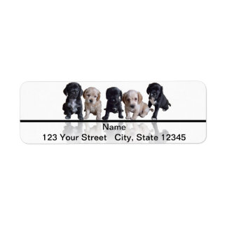 Five Black and Tan Cocker Spaniel Puppies Return Address Label
