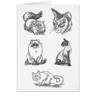 Five Cats greeting card by Nicole Janes